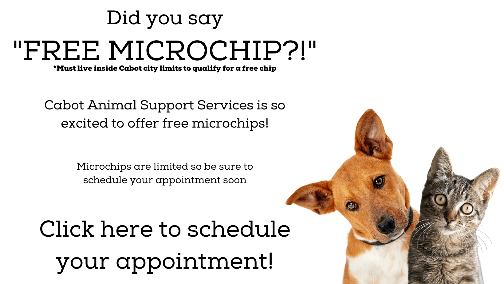 Did you say _FREE MICROCHIP_!_ (1)